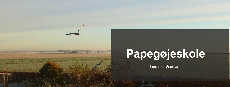 Papegøjeskole